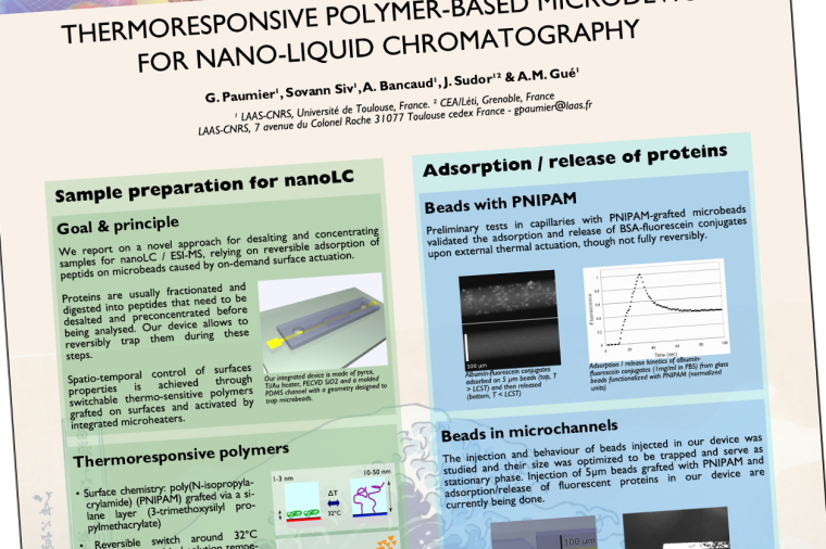 Screenshot of the scientific poster